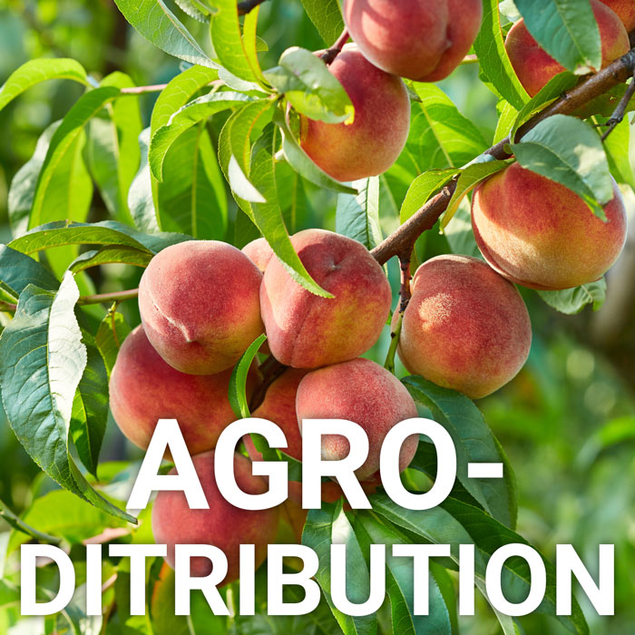 AGRO DISTRIBUTION
